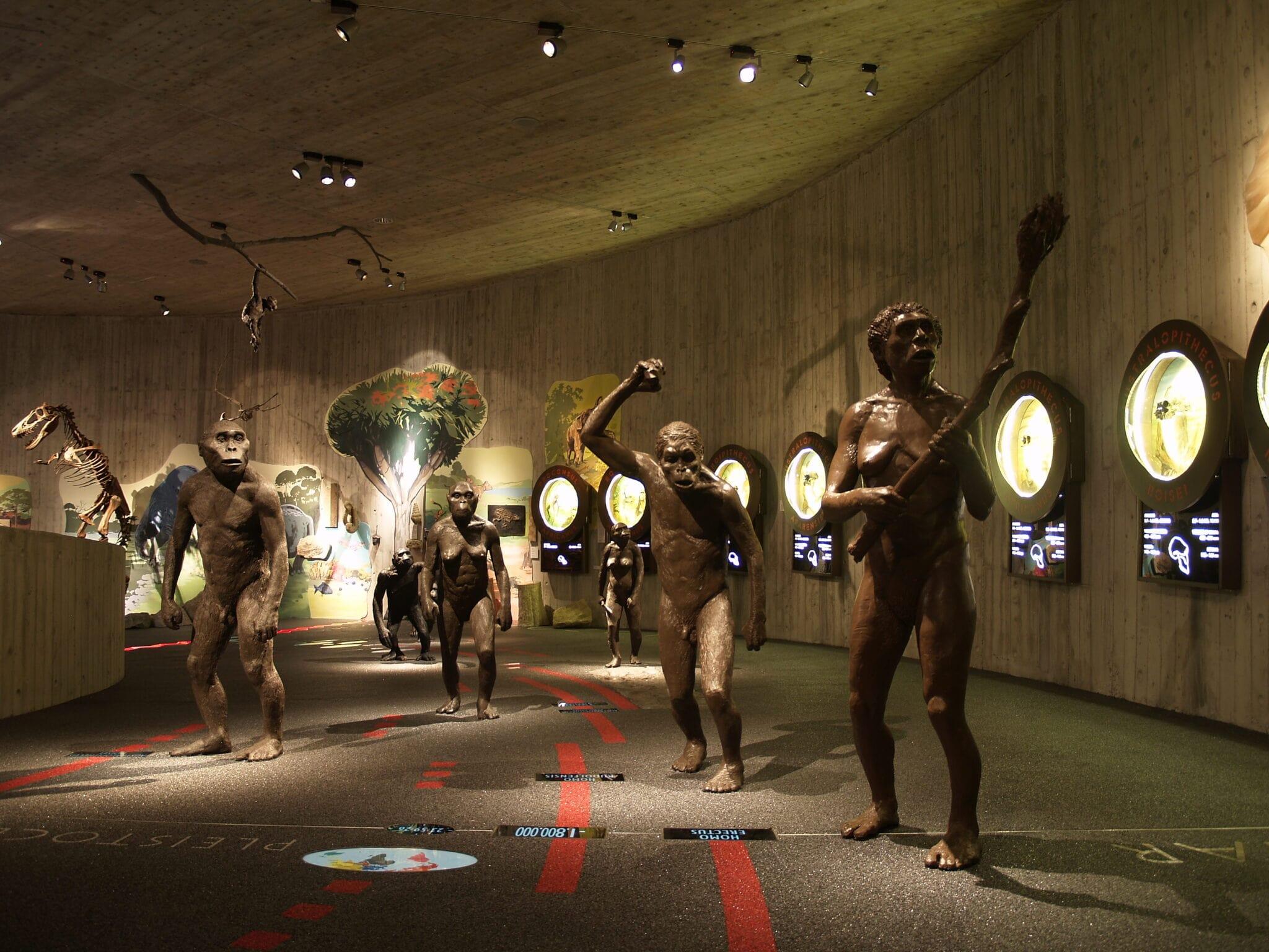 Krapinski muzej neandertalaca